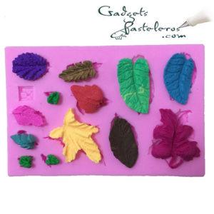 molde silicona hojas surtidas mini